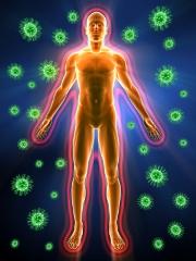 immune system pictures